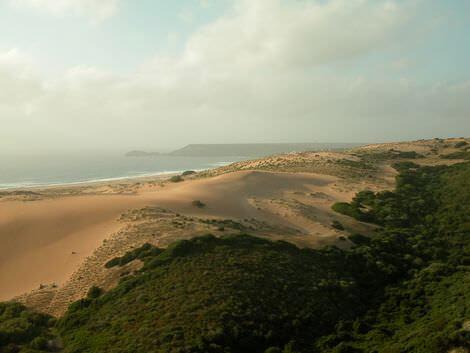 brezzamarina_dune