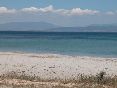 jacaranda_spiaggia