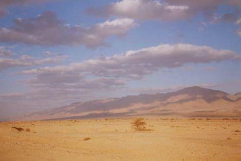 desertoisraele