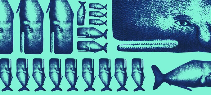 """locandina dello spettacolo """"Io, Moby Dick"""" al Teatro Litta MTM di Milano"""