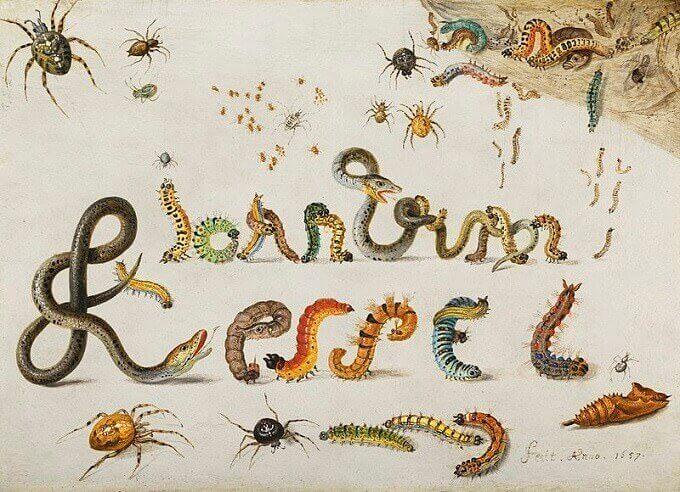 La firma dell'artista Jan van Kessel dipinta su rame