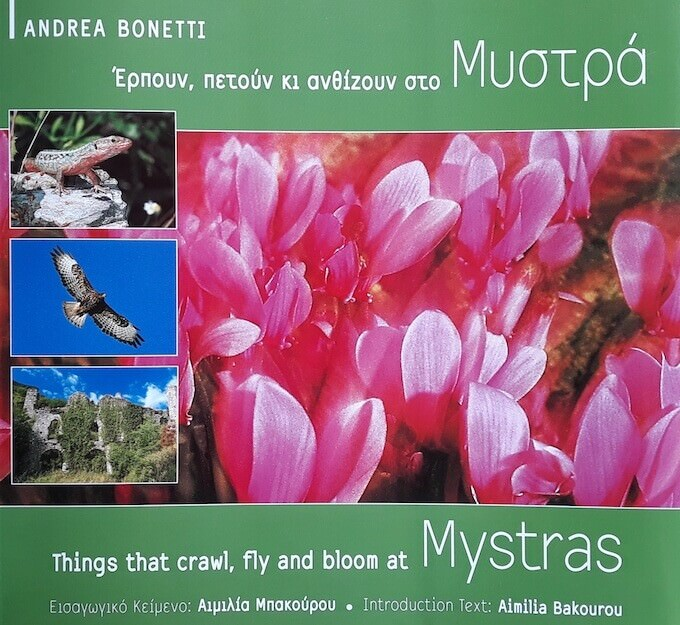 """Things that crawl, fly and bloom at Mystras"" di Andrea Bonetti"