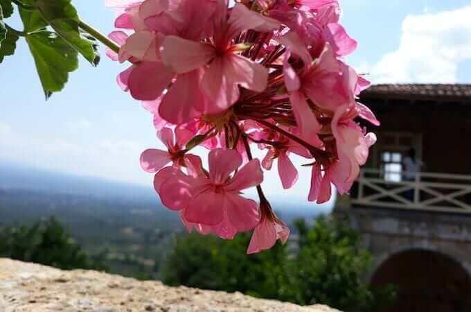 Mistrà nel Peloponneso: un piccolo paradiso