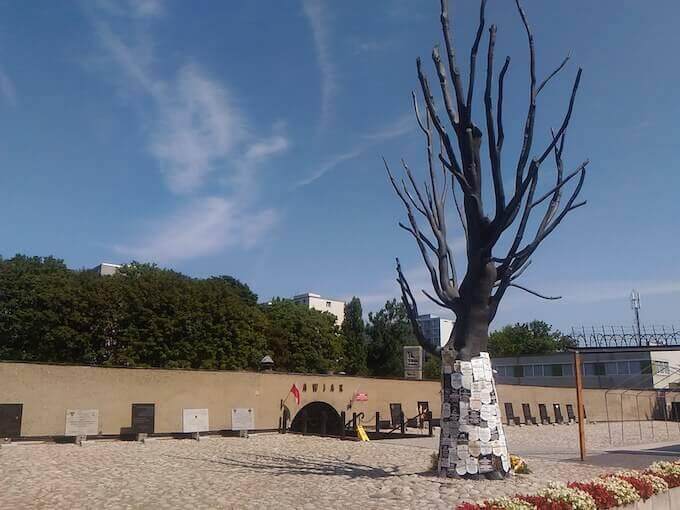 L'olmo di ferro davanti alla prigione nazista di Pawiak a Varsavia