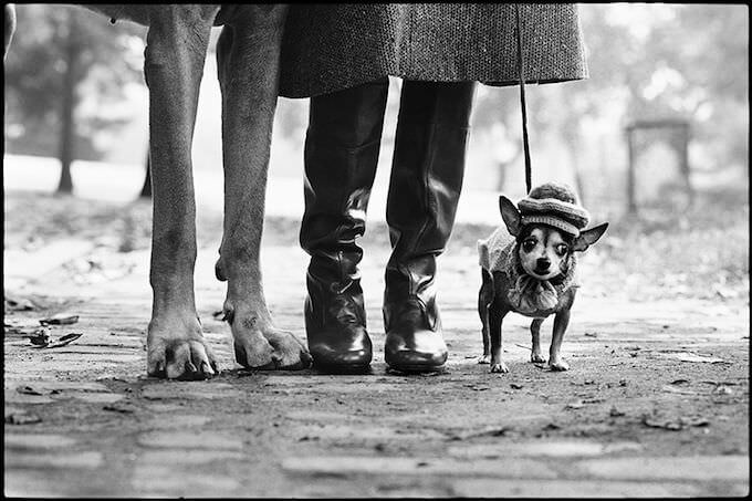 Elliott Erwitt, New York City, USA, 1974 © Elliott Erwitt