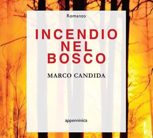 """Marco Candida, """"Incendio nel bosco"""", Tarka Edizioni"""