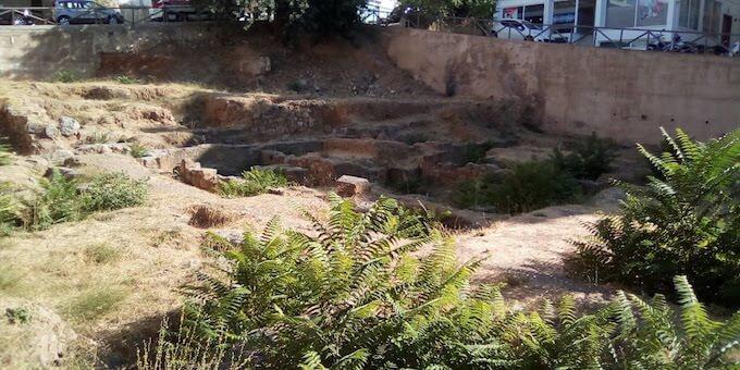 Agios Nikolaos: rovine infestate da ailanti