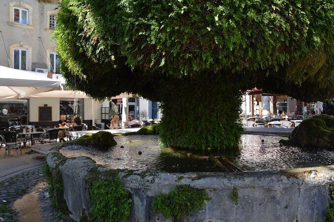 Salon: Fontaine Moussue