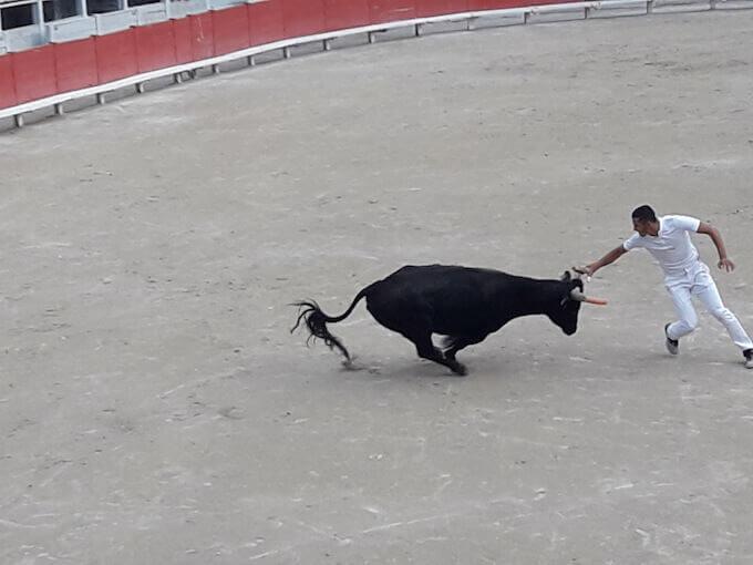 Corrida nell'arena di Arles