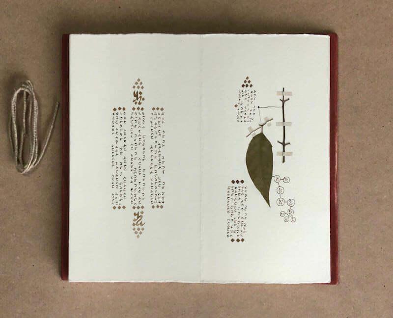 Davide Meroni, Codex Ailanto 2